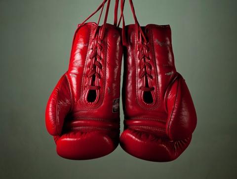 kickbox handschoenen